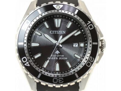 Citizen Promaster Ladies EP6050-17E
