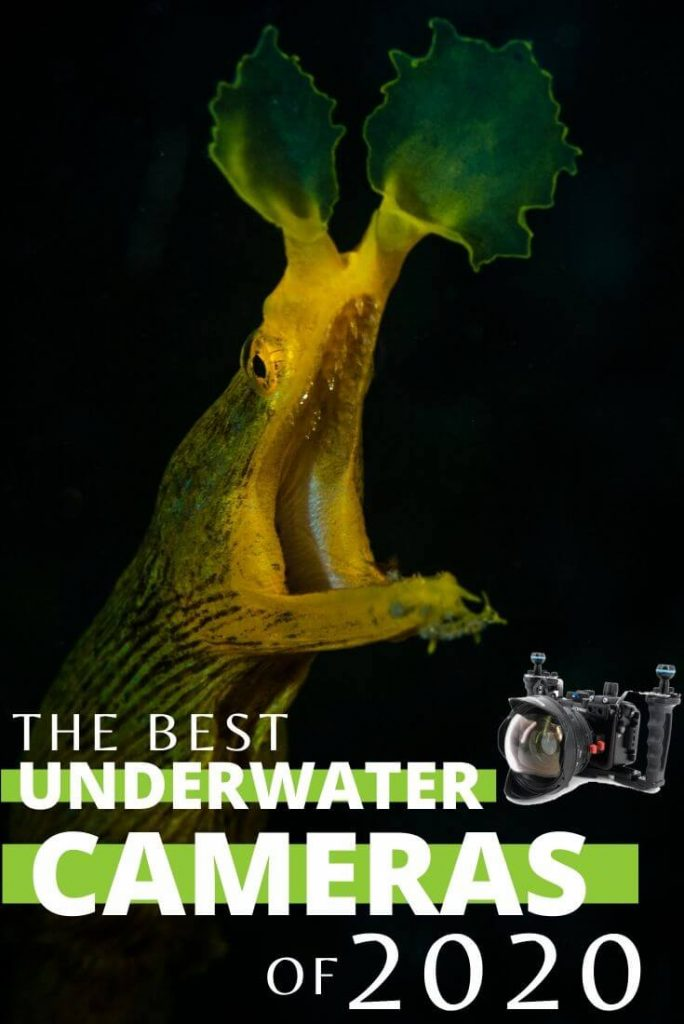underwater cameras