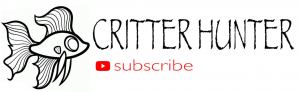 critter hunter youtube